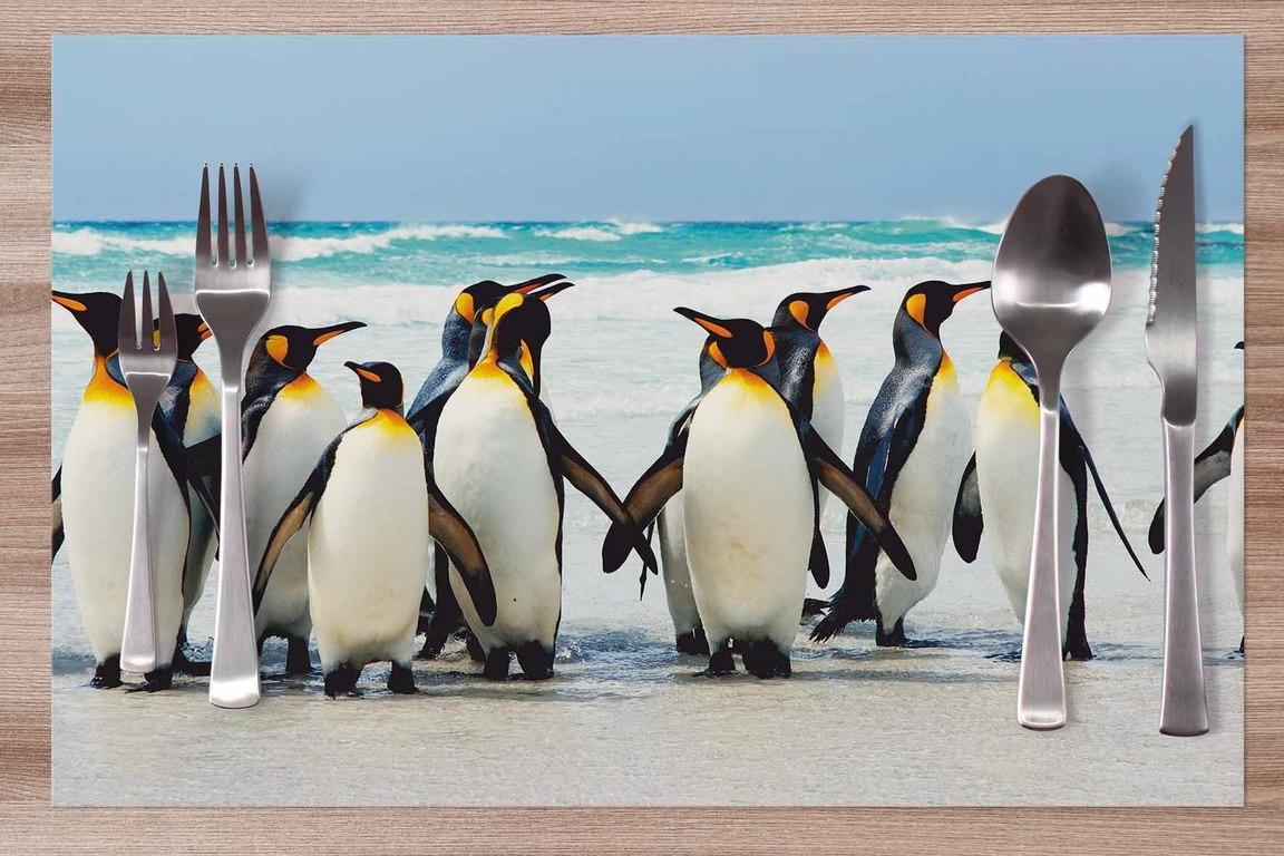 Prestieranie Tučniaky