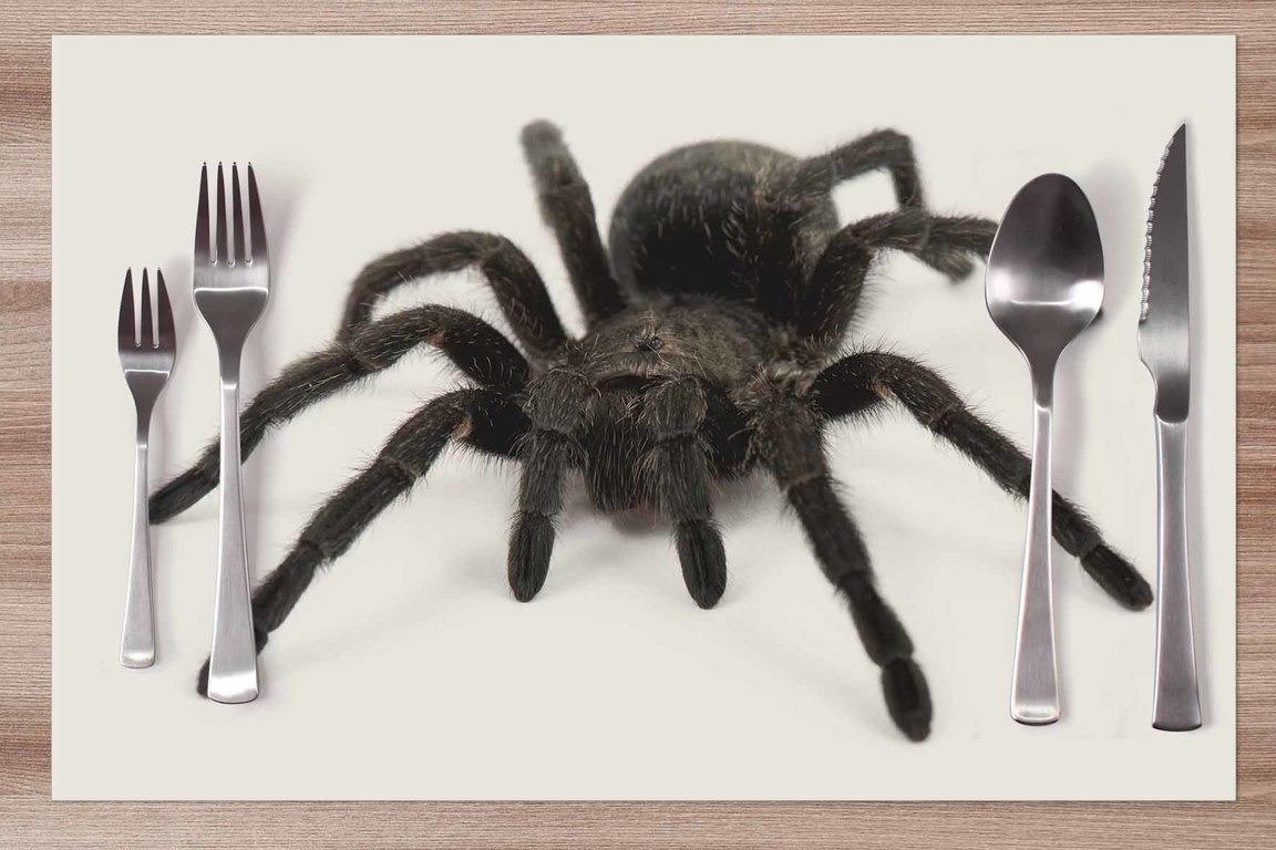 Prestieranie Pavúk