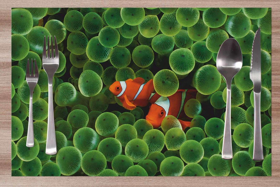 Prestieranie Nemo