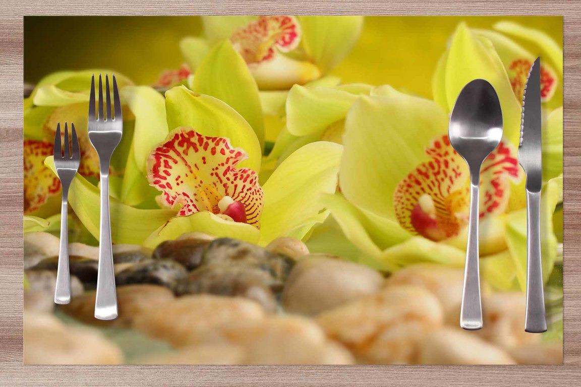 Prestieranie Zelená orchidea