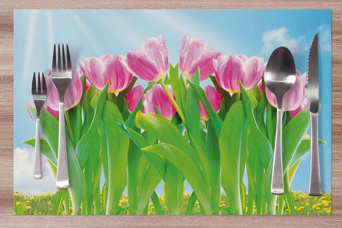 Prestieranie Tulipány ružové